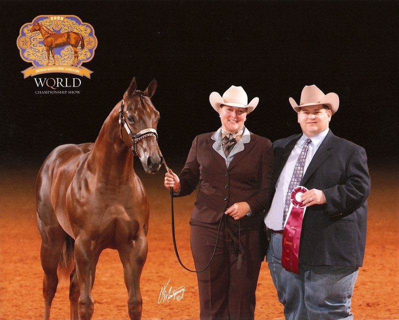 The Strike Zone - 2008 AQHA World Show